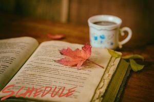 leaves-1076307_960_720